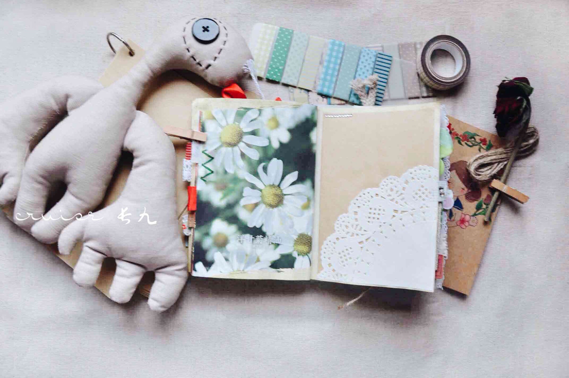 手帐 📍详图3#植物图鉴🦌🌸?..., 手帐工具